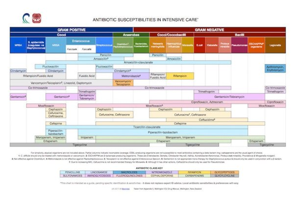 Antibiotic spectrum of activity